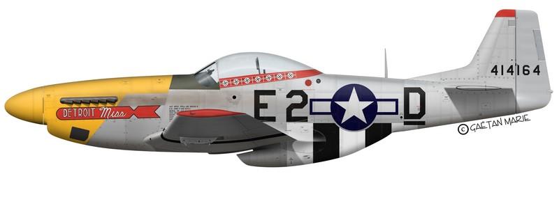 P-51: Je ne voulais pas. Je n'ai pas fait exprès... Detroitmiss